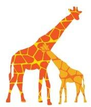 avalisa - Reticulated Giraffe Stretched Print